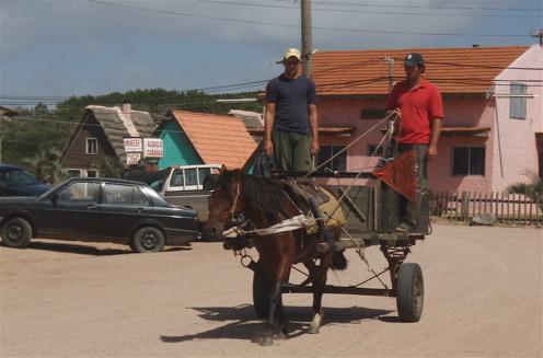 horse-cart-497w
